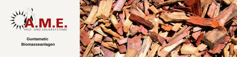Guntamatic Biomasseanlagen